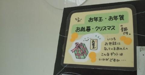 15-11-24-11-37-51-498_photo