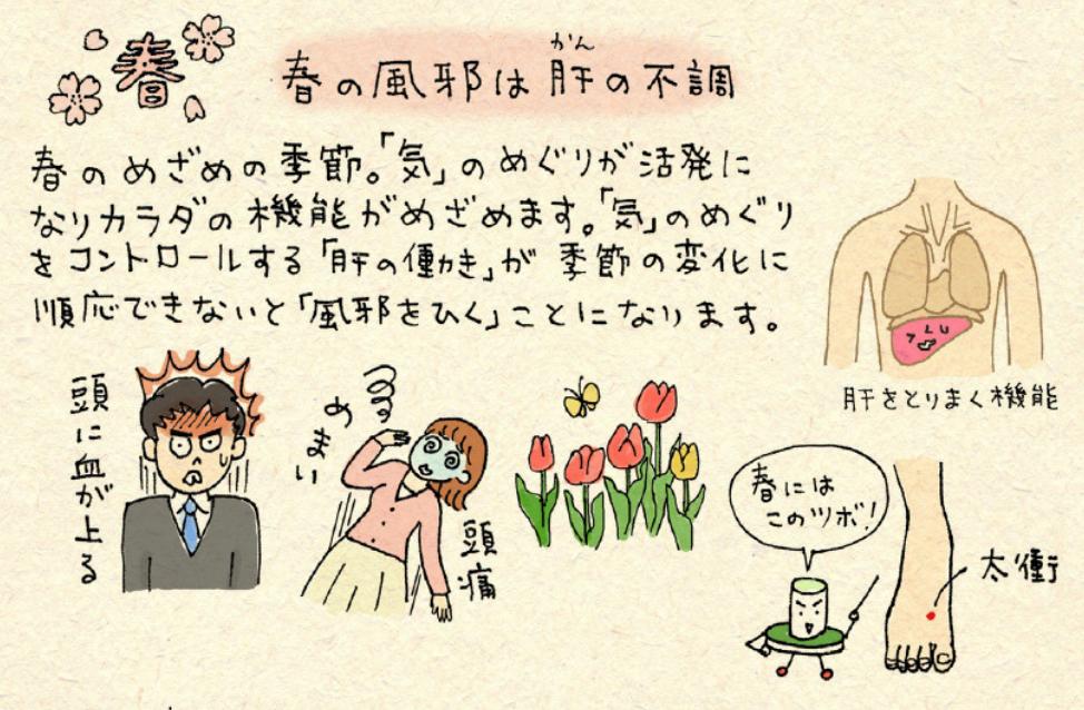 春の風邪に効くツボ「太衝(たいしょう)」