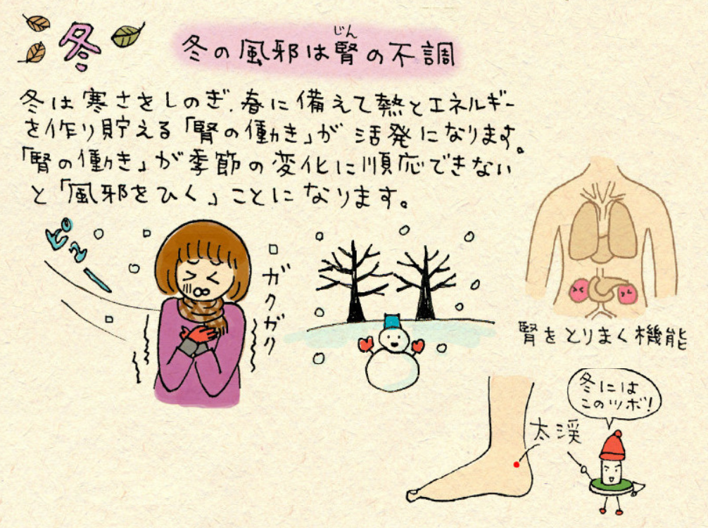 冬の風邪に効くツボ「太渓(たいけい)」